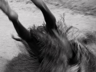 Ein Tänzer bei einer seltenen Regen-Zeremonie am Fluss Mono im Westen Benins im Zustand der Trance. Wird dem Tänzer mit Gewalt der Bastrock übergestreift, werden die brachialen Energien freigesetzt. Sie vereinigen sich mit den Göttern. Die Tänze dauern bis zu drei Tagen.